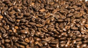 σύσταση καφέ φασολιών ανασκόπησης Στοκ εικόνα με δικαίωμα ελεύθερης χρήσης