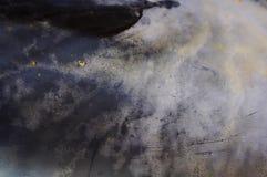σύσταση κοχυλιών Στοκ Φωτογραφία