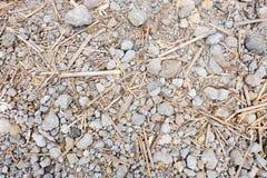 Σύσταση μπαμπού/βράχου Στοκ φωτογραφίες με δικαίωμα ελεύθερης χρήσης