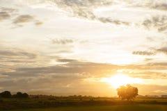 σύσταση ουρανού ουρανών βραδιού Στοκ φωτογραφία με δικαίωμα ελεύθερης χρήσης