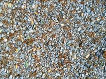 Σύσταση πατωμάτων πετρών χαλικιών Στοκ εικόνα με δικαίωμα ελεύθερης χρήσης