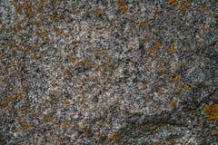 σύσταση πετρών βράχου βρύου Σύσταση σχεδίων της φύσης άνευ ραφής σύσταση πετρών Στοκ φωτογραφία με δικαίωμα ελεύθερης χρήσης