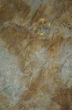 σύσταση πετρών βράχου βρύου Στοκ Φωτογραφία