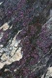 Σύσταση πετρών Chariote Στοκ εικόνες με δικαίωμα ελεύθερης χρήσης