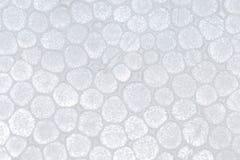 σύσταση πολυστυρολίου αφρού Στοκ εικόνες με δικαίωμα ελεύθερης χρήσης