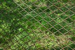 Σύσταση σιδήρου από ένα γκρίζο σκουριασμένο πλέγμα από έναν φράκτη σε ένα πράσινο υπόβαθρο στοκ εικόνες