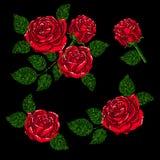 Σύσταση σχεδίων κεντητικής, ταπετσαρία, υπόβαθρο με τα όμορφα τριαντάφυλλα Διανυσματική floral διακόσμηση στο μαύρο υπόβαθρο Στοκ Φωτογραφίες