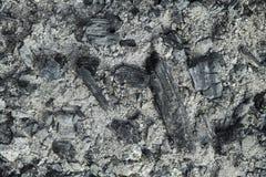 Σύσταση τέφρας και άνθρακα Στοκ φωτογραφία με δικαίωμα ελεύθερης χρήσης