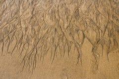Σύσταση της άμμου Στοκ Φωτογραφία
