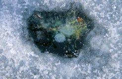 Σύσταση της επιφάνειας πάγου μπλε snowflakes ανασκόπησης άσπρος χειμώνας Στοκ φωτογραφία με δικαίωμα ελεύθερης χρήσης