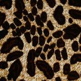 Σύσταση της ριγωτής λεοπάρδαλης υφάσματος τυπωμένων υλών Στοκ Φωτογραφίες