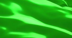 Σύσταση της σημαίας με το βασικό πράσινο υπόβαθρο χρώματος οθόνης χρώματος απόθεμα βίντεο