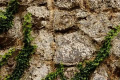 Σύσταση τοίχων βράχου με πράσινο Στοκ εικόνα με δικαίωμα ελεύθερης χρήσης