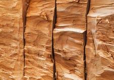 Σύσταση του δέντρου, ξύλο, σιτάρι ανώμαλο στοκ φωτογραφίες με δικαίωμα ελεύθερης χρήσης