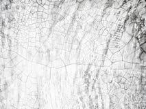 Σύσταση του ραγισμένου άσπρου υποβάθρου τοίχων ασβεστοκονιάματος για για τη σύνθεση σκηνικού για το περιοδικό ιστοχώρου ή το γραφ στοκ φωτογραφία