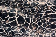 Σύσταση του ριγωτών με ραβδώσεις και της λεοπάρδαλης υφάσματος τυπωμένων υλών Στοκ Εικόνες