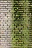 Σύσταση τούβλου Στοκ Εικόνα