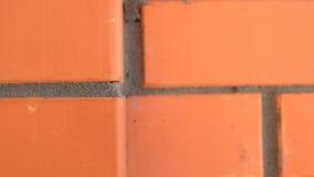 Σύσταση τούβλινη Στοκ φωτογραφία με δικαίωμα ελεύθερης χρήσης