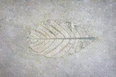 Σύσταση τσιμέντου Στοκ φωτογραφία με δικαίωμα ελεύθερης χρήσης