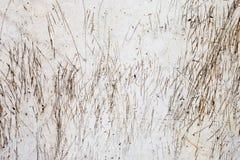 Σύσταση των γρατσουνιών και των σημαδιών στον ανοικτό γκρι συμπαγή τοίχο Στοκ Εικόνες