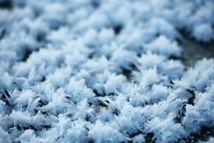 Σύσταση των κρυστάλλων παγετού Στοκ Εικόνες