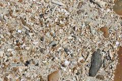 Σύσταση των μικρών πετρών, κοχύλια, διάφορα χρώματα Στοκ εικόνες με δικαίωμα ελεύθερης χρήσης