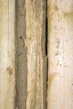 Σύσταση των παλαιών φυσικών ξύλινων κούτσουρων με τις ρωγμές από την έκθεση στον ήλιο και τον αέρα Στοκ φωτογραφία με δικαίωμα ελεύθερης χρήσης