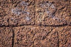 Σύσταση υποβάθρου στρώματος βράχου Στοκ Φωτογραφίες