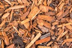 Σύσταση υποβάθρου τσιπ φλοιών δέντρων πεύκων Στοκ φωτογραφία με δικαίωμα ελεύθερης χρήσης
