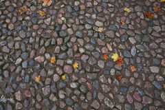 Σύσταση φθινοπώρου πετρών επίστρωσης Στοκ Φωτογραφίες