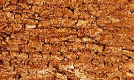 Σύσταση φλοιών δέντρων στον πορτοκαλή τόνο Στοκ φωτογραφία με δικαίωμα ελεύθερης χρήσης