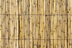 Σύσταση φρακτών Bambu Στοκ φωτογραφία με δικαίωμα ελεύθερης χρήσης