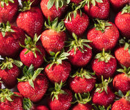 Σύσταση φραουλών υποβάθρου μούρων Στοκ εικόνες με δικαίωμα ελεύθερης χρήσης