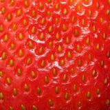 Σύσταση φραουλών. Υπόβαθρο μούρων Στοκ φωτογραφίες με δικαίωμα ελεύθερης χρήσης