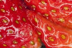 Σύσταση φραουλών Στοκ Εικόνες