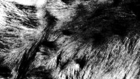 Σύσταση Grunge στοκ εικόνες με δικαίωμα ελεύθερης χρήσης