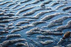 Σύσταση Puckered της παραλίας άμμου Στοκ Εικόνες