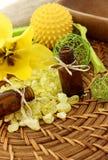 Σύσταση SPA του άλατος, του μπουκαλιού και του λουλουδιού λουτρών Στοκ φωτογραφία με δικαίωμα ελεύθερης χρήσης