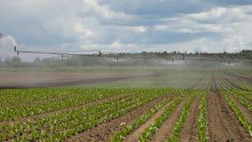 Σύστημα άρδευσης στη αγροτική γη Στοκ εικόνες με δικαίωμα ελεύθερης χρήσης