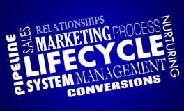 Σύστημα διαχείρισης μολύβδων πωλήσεων μάρκετινγκ κύκλου της ζωής απεικόνιση αποθεμάτων