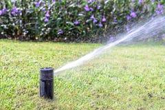 Σύστημα ψεκαστήρων νερού χορτοταπήτων κήπων στοκ εικόνες με δικαίωμα ελεύθερης χρήσης