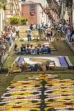 Σώμα Cristi στο Λα Orotava Στοκ Εικόνα