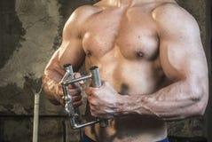 Σώμα Fittnes workout μυϊκό στοκ εικόνα