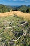 Σλοβάκικα βουνά Στοκ εικόνες με δικαίωμα ελεύθερης χρήσης
