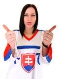 Σλοβάκικος ανεμιστήρας Στοκ Φωτογραφία