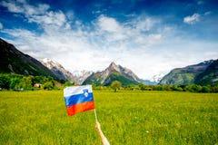 Σλοβένικο τοπίο με τη σημαία Στοκ εικόνα με δικαίωμα ελεύθερης χρήσης