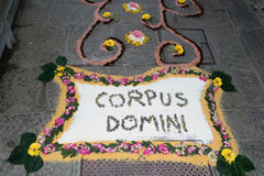 Τάπητας πετάλων και λουλουδιών για τον εορτασμό christi domini σωμάτων Στοκ φωτογραφία με δικαίωμα ελεύθερης χρήσης