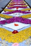 Τάπητας πετάλων και λουλουδιών για τον εορτασμό christi domini σωμάτων Στοκ Εικόνα