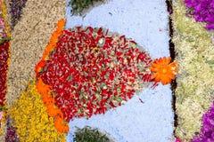 Τάπητας πετάλων και λουλουδιών για τον εορτασμό christi domini σωμάτων Στοκ εικόνα με δικαίωμα ελεύθερης χρήσης