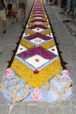 Τάπητας πετάλων και λουλουδιών για τον εορτασμό christi domini σωμάτων Στοκ Εικόνες